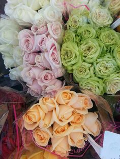 Bouquet of Roses #rose, #green rose, #white rose, #pink rose, #yellow rose, #bouquet, #bouquet of roses, #green, #flowers