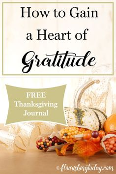 Do the holidays seems to whirl by before you can even blink? Join us as we focus on Thanksgiving and the heart of gratitude. (FREE JOURNAL)