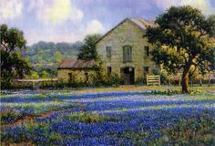 Mark Haworth.  Field Of Flowers. 20X30