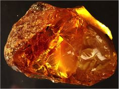 Lithuania i salso well – known because of the amber found in our beach near the Baltic sea. We have an amber museum in Palanga. It is established in Tiškevičius palace, which is bulit in 1897. Currently, more than 28000 amber jobs are exposed there.