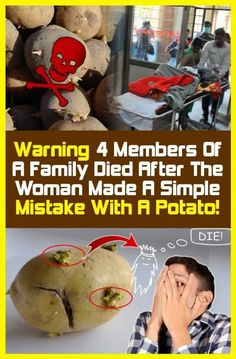 Warning: Four Family Members died after The Woman Made with A Potato! Made a single mistake. Making Mistakes, For Your Health, Get Healthy, Healthy Style, Healthy Beauty, Happy Healthy, Healthy Choices, Healthy Habits, Potatoes