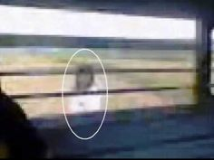 You Won't Sleep Tonight When You See What These 10 Videos Have In Common - Pictures and Trending Stories Around the Web Paranormal Videos, Ghost Videos, Spirit World, After Life, Time Travel, Bing Images, Creepy, Fiction, Photo And Video