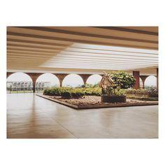 #itamaratypalace #hanginggarden #mariamartins #ocantodanoite #oscarniemeyer #brasilia #burlemarx