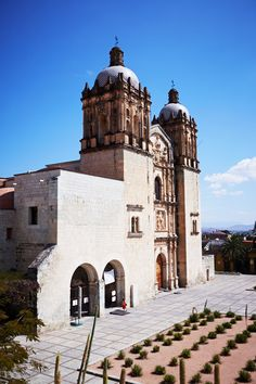 An astonishing botanical garden of native Oaxacan plants is hidden behind the walls of the impressive Santo Domingo Church, several blocks north of Oaxaca's zócalo, or main square.