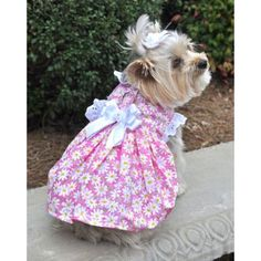Pink Daisy Flower Frenzy Dog Dress | Dog Clothes at GlamourMutt.com