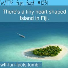This is Tavarua Island, Fiji. It is a heart-shaped island resort close to the main Fijian island, Viti Levu. It has an area of 29 acres. Wow Facts, Wtf Fun Facts, True Facts, Funny Facts, Random Facts, Crazy Facts, Strange Facts, Real Facts, Random Things