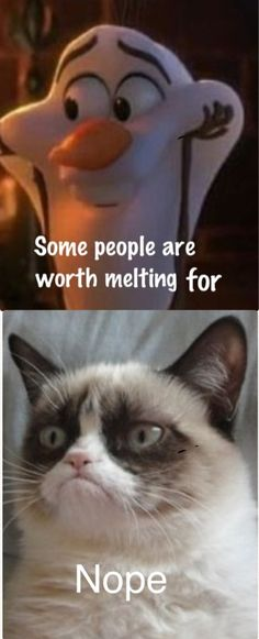 Olaf and Grumpy cat don't mix!