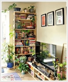Boho , urban jungle bookcase atyling