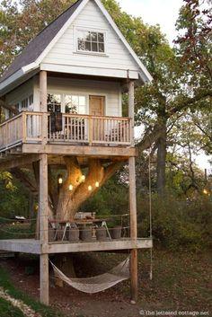 Adult treehouse !!!