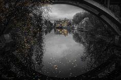Randomized by barenstaden | Photographers Photography !