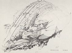 """Concept Art from filmmaker Alejandro Jodorowsky's abandoned adaptation of Frank Herbert's political, mythological science-fiction fantasy novel, """"DUNE"""" in the early-mid A number of notable. Stoner Rock, Robert Mcginnis, John Waters, George Carlin, Frank Frazetta, Ralph Mcquarrie, Concept Art Alien, Zombies, Jodorowsky's Dune"""