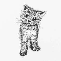 A little cat for my daily drawing 154   #dailydrawing #drawing #ink #inkdrawing #cat http://ift.tt/2mVo1bu A little cat for my daily drawing 154  dailydrawing drawing ink inkdrawing cat tumblr