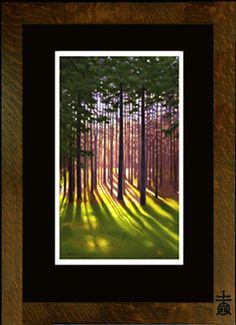 Laura Wilder: Pine Woods I