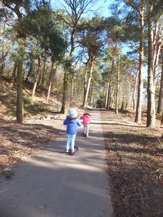 Scootering through Crimple Woods in Harrogate. One of six lovely things to do in Harrogate for free with kids.