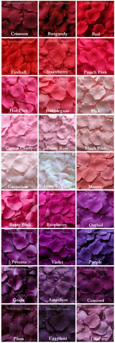 Purple Rose Petals in 14 Shades, Purple Silk Rose Petals, Fake Rose Petals, rose petals for aisle runners, flower girl petals Fake Rose Petals, Flower Petals, Color Mixing Chart, Monochrome Color, Color Psychology, Silk Roses, Flower Wallpaper, Color Shades, Color Theory