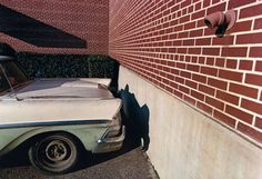 william eggleston, at war with the obvious