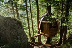 Уникальный проект - маленький дом на дереве - instaHOME.ru