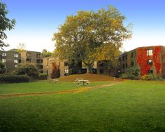 Autumn at Trevelyan College