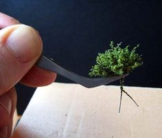 TUTORIAL - creating miniature bushes/shrubbery from frayed twine wrapped with wire, coated with powdered green texture product - in Spanish, but step-by-step photos illustrate the process well.