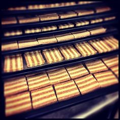 Cinnamon Stripe Cookies getting crunchy #Raw #Organic #Vegan (insert #Yum!)