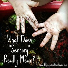 "What Does ""Sensory"" Really Mean?  A closer look at #sensory processing from one of our occupational therapists.  #pediot #pediastaff"