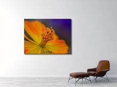 Nicole Carmine - Fine Art Photography Künstlershop www. Art Photography, Fine Art, Carmine, Painting, Art, My Arts, Fine Art Photography