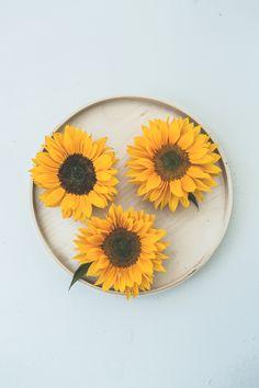 Wat als je één bloem zou mogen kronen tot koningin van de zomerbloemen? #zonnebloem #mwbd
