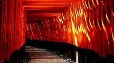 Définition du shintoïsme