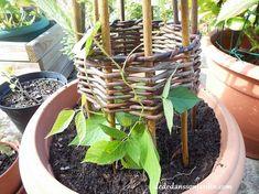 DIY jardin support en noisetier | Dédé dans son jardin
