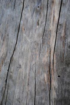 ...Wood...Skin....................................