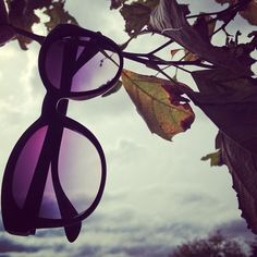 Through the shades | #vogueeyewear #stylemiles #sunglasses #fashion #beauty #inspiration