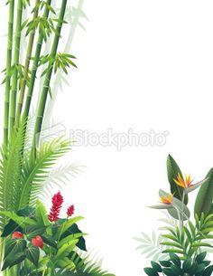 Tropical Garden Royalty Free Stock Vector Art Illustration