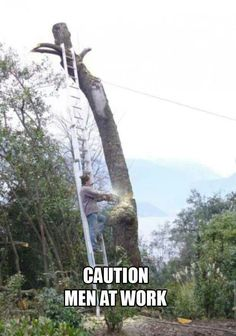 dumb people idiots morons stupid 3 Darwins exceptions never cease to amaze Photos) Funny Cartoons, Funny Memes, Darwin Awards, Humor Grafico, Funny Couples, Stupid People, Stupid Guys, Crazy People, Funny People