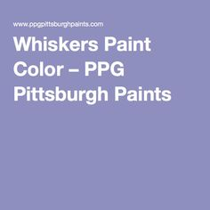 whiskers paint colorDover Gray 5185 By PPG Porter Paints dining room and back of