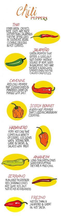 #Chilli #Pepper #Infographic