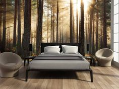 The Dirty Facts About Bedroom Decor Mural Wallpaper House Design House Interior Forest Wallpaper You will have the ability to unwind and feel good in your new room full of wonderful furniture. Master Bedroom Design, Dream Bedroom, Home Bedroom, Bedroom Wall, Bedroom Decor, Bedroom Ideas, Bedroom Designs, Forest Wallpaper, Home Wallpaper