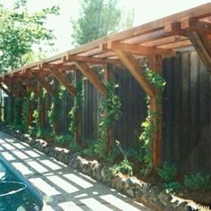 Pergola for climbing vines attached to a fence.