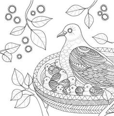 1000 images about Free Colouring
