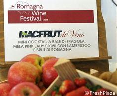 Romagna Wine Festival: un boom di visitatori per @Macfrut DiVino ! #frutta e #vino la nuova combo #sanomangiareit