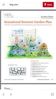 What To Search For Right Before You Purchase Your Higher Than Floor Pool Sensational Summer Garden Plan The Plan, How To Plan, Small Flower Gardens, Small Flowers, Horticulture, Flower Garden Plans, Backyard Plan, Garden Pests, Backyard Projects