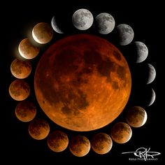 April 2014 Lunar Eclipse | Flickr - Photo Sharing!