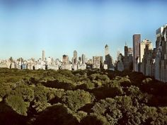 New York City.  Concrete jungle where dreams are made of 💕