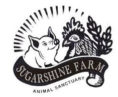 Image result for sugarshine farm sanctuary