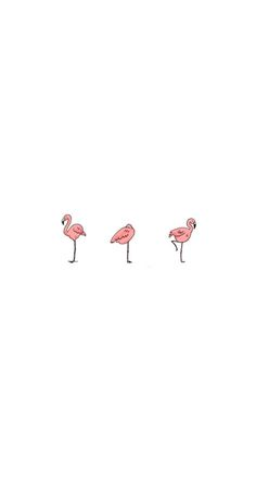 VISIT FOR MORE cute simple flamingo wallpaper The post cute simple flamingo wallpaper appeared first on wallpapers. Cute Backgrounds, Phone Backgrounds, Cute Wallpapers, Wallpaper Backgrounds, Iphone Wallpapers, Wallpaper Desktop, Wallpaper Ideas, Tumblr Wallpaper, Screen Wallpaper