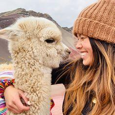 Tours a Machu Picchu y Cusco - Peru Pachamama Travel Alpacas, Ushuaia, Cute Bestfriend Pictures, Cute Baby Animals, Funny Animals, Llama Alpaca, Baby Goats, Machu Picchu, Animal Kingdom