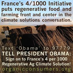 France's 4/1000 Initiative puts regenerative food and farming front and center in the climate solutions conversation. More than two dozen countries including Australia, the UK and Mexico have signed on. But the U.S. has yet to step up and to be a part of the solution. TAKE ACTION! President Obama: Sign on to France's 4 per 1000 Regenerative Ag Climate Solution! #RegenerativeAg #Paris2015 #COP21