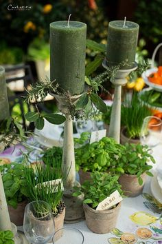 Wow World, Kraut, Pillar Candles, Herbalism, Candle Holders, Table Settings, Table Decorations, Interview, Wedding