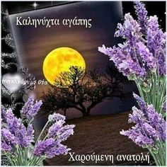 Good Night, Plants, Nighty Night, Plant, Good Night Wishes, Planets