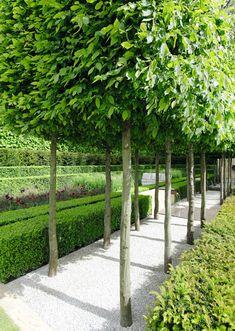 modern garden ✔ 63 contemporary garden design alteration and refurbishment with modern planting scheme 46 Formal Garden Design, Contemporary Garden Design, Landscape Design, Garden Modern, Smart Garden, Modern Planting, Modern Landscaping, Backyard Landscaping, Backyard Ideas