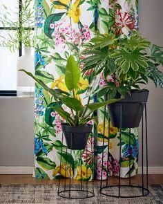 Galen i grönska! Blommor gör att ditt hem känns levande och gömmer tråkiga väggar och hörn. DOLORES gardin LAGAN kruka och krukställ